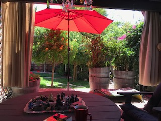 view from garden couch red umbrellaIMG 3875